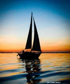 O Barco Num barco à vela Eu velejei sem destino… Sem ter medo de nada. Fui em busca do novo Mundo Aquele que vem lá do fundo, Aquele que imagino ser o do futuro Enquanto içava as velas Em novos horizontes ia pensando, Incrustando na minha mente Essa vontade que se me ateia… Por águas oceânicas navego Só, no barco que me transporta E sonhando muitas vezes… Esse barco fazia-me de todo acreditar Que o meu sonho havia de chegar! (Francisco Leonardo)