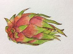 Dragon fruit painted by Kathy Lewis in Tracey Fletcher King's Delicious Paint course at Community Thrive
