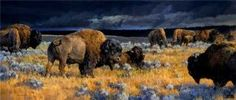 Restless by Nancy Glazier - Restless is without doubt, the most popular of all Glazier's bison paintings. The warm hues of the buffalo and grasses contrast dramatically with the rich navy blue hues in the roiling sky.
