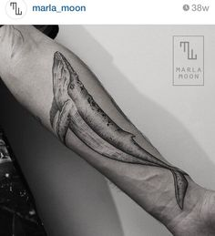 Whale tattoo