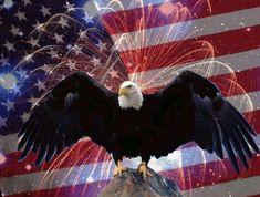 Patriotic Eagle | Celebrating Independence Day in America…. » Eagle-Flag-Fireworks