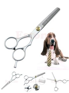 [Visit to Buy] Pet Dog Cat Stainless Steel Grooming Hair Cutting Teeth Thinning Scissors Shears #Advertisement