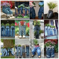 Image result for blue jean planters