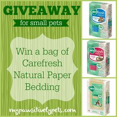 Carefresh® Complete Natural Paper Bedding for Small Pets #sponsored