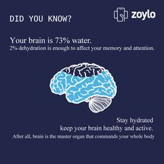 Know About Your Brain!