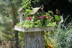 Яркий декор для сада из старого пня