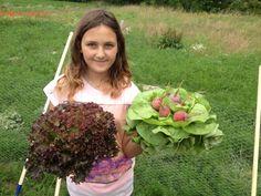 Lecker Cabbage, Vegetables, Food, Harvest Season, Essen, Cabbages, Vegetable Recipes, Meals, Yemek
