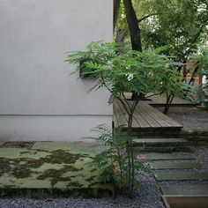 Garten Menardi / Thomas Bendel Architekt