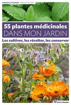55 plantes médicinales dans mon jardin - Les cultiver, les récolter, les conserver. Par Virginie Peytavi.