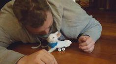 """Este pequeño conejo blanco se ha hecho famoso en poco tiempo. Y no por su tamaño ni por los besos que le da a su dueño, sino por las ruedas que le permiten andar. Wheelz [ruedas, en inglés] tiene parálisis en las patas traseras. Un agricultor de la granja neoyorquina Overlook Acres lo encontró """"rígido y medio congelado"""", pero sorprendió a todos con su rápida recuperación. Pasados unos días, lo único que no movía eran las patitas de ..."""