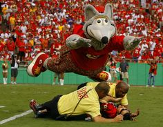 kc chiefs | Kansas City Chiefs mascot KC Wolf helped out security guards by diving ...
