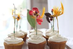 Toppins para cupcakes, tartas, ...