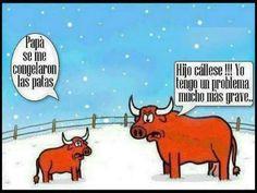 Helado de Toro