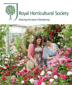 Win 2 Tickets to RHS Hampton Court Palace Flower Show! - Phase Eight Blog