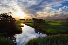 Travel | Delaware | Bucket List | Best of Delaware | Bombay Hook National Wildlife Refuge | Birding | International Flyway | Migratory Birds | Scenic Delaware | Isolated | Remote | Rural