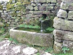 BEETJE GEHEIMZINNIG WEL: Alsof je tuin al heel wat eeuwen meegaat. Ik zie hem vooral staan bij een keuze voor een min of meer oorspronkelijke kruidentuin bijvoorbeeld.