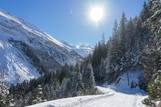 Bichlalm, Hintertux, Rodelbahn, Winter Mountains, Winter, Nature, Travel, Environment, Nice Asses, Winter Time, Voyage, Viajes