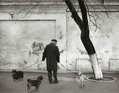 Kristoffer Albrecht, Man with Three Dogs, Odessa, Ukraine, 2004 Odessa Ukraine, Dogs, Painting, Art, Fotografia, Art Background, Pet Dogs, Painting Art, Kunst