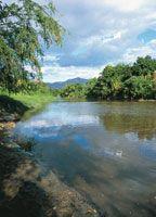 En la actualidad las riberas del Magdalena conservan sitios que mantienen parte del encanto y la pureza que cautivó a los primeros pobladores y expedicionarios.
