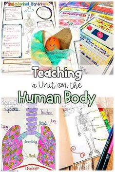 Human Body Engage Students In Learning About Ten Different Body Systems With This Bundle Of Varied Activities Including Webquests, Nonfiction Reading, Doodle Sketch Notes, Flipbooks, And Projects The Human Body, Human Body Unit, Human Body Activities, Hands On Activities, Science Activities, Science Fun, Montessori Science, Science Experiments, Preschool