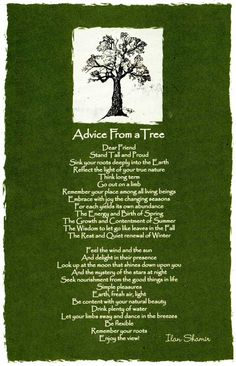 advice from a tree, my ALL time favorite poem. has been since my first yoga class :)