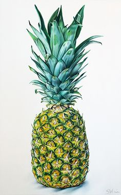 Pineapple - Oil on canvas. Sarah E. Wain