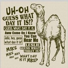 hump day.  My favorite!