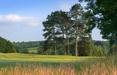 Golf Clubs, Golf Courses, Country Roads, Green