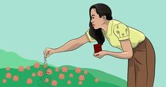 Rozrzuca ziarna kawy w ogrodzie... Dwa tygodnie później? Oszałamiający widok! | LikeMag - Social News and Entertainment