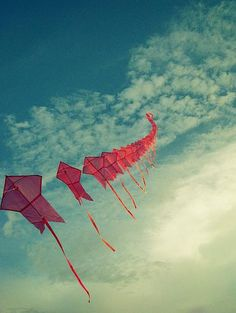 Kites....on a windy spring day! <3