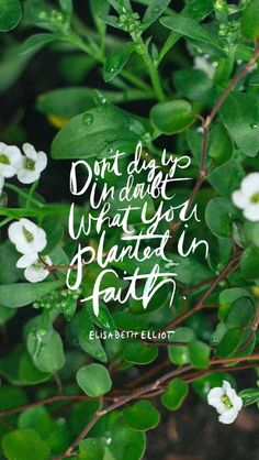 Faith.  via - Because It's Awesome: Tech Wallpapers from Thorn + Sparrow