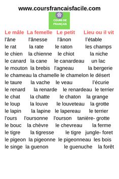 French Language Lessons, French Language Learning, French Lessons, French Prepositions, French Adjectives, French Expressions, Read In French, Learn French, French Teaching Resources