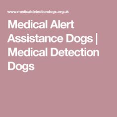 Medical Alert Assistance Dogs | Medical Detection Dogs