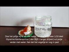 Goedkoop-bloemschikken.nl: hoe maak je zelf een sneeuwbol, schuddebol maken
