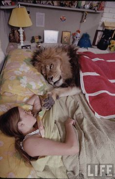 Melanie Griffith (Tippi Hedren's daughter) in bed with the family's pet lion.  Photo by Life Magazine.