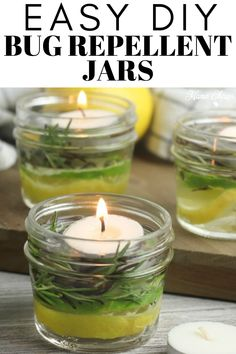 Bug Repellent Candles, Diy Mosquito Repellent, Insect Repellent, Oil Candles, Candle Jars, Scented Candles, Dubai Miracle Garden, Olive Garden, Summer Diy