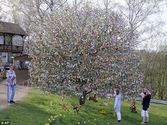 German couple decorates tree with 9000 hand-painted easter eggs every year