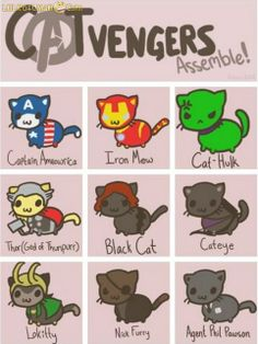 Cat Avengers. I thought of you when I pinned this Alisha. Why is it I always think of you when I see a cat now? :)