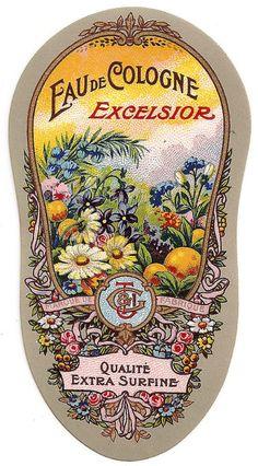 Papel Vintage, Vintage Tags, Vintage Labels, Vintage Ephemera, Vintage Paper, Printable Vintage, Vintage Packaging, Vintage Design, Vintage Prints