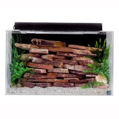 SeaClear Show Tank 29 Gallon Aquarium Kit at PetSmart. Shop all fish aquariums online 29 Gallon Aquarium, Aquarium Kit, Aquarium Fish Tank, Turtle Tank Setup, Turtle Dock, Fish Tank Sizes, Saltwater Fish Tanks, Tanked Aquariums