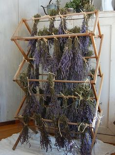 Drying herbs on an old laundry drying rack. This is exactly how I dry my herbs, works well and adds a little magical feeling to your home✨