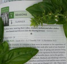 Summer is Here | Garden In Delight