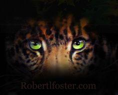 leopard art jaguar art  JUNGLE EYES  wildlife jungle by lewfoster, $15.00