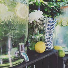 Drinksopskrifter i litermål til dispenser og bowler