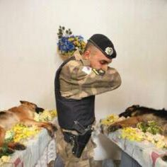 OMG--  Many people remember a fallen solider as someone in uniform. Sometimes that solider is the four legged friend that saved your life by sniffing out the IED and warning you before it exploded. This is a sad but beautiful picture of pure respect for two fallen heroes.