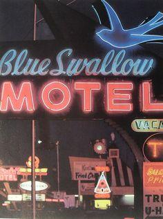 1960s Blue Swallow Vintage Motel Sign Neon Roadside by Christian Montone, via Flickr