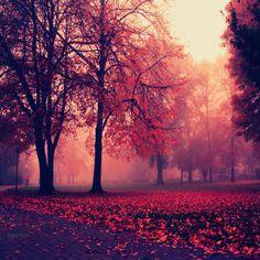 Autumn Mist, Germany