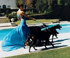 Fierce Fashion. Love the contrast of vicious-looking dogs and flowing elegance of the dress.   (Photographed by Mario Testino for Vogue in 2005)