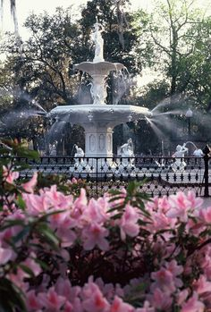 Forsyth Park, Savannah, GA. My hubby and I were married here!