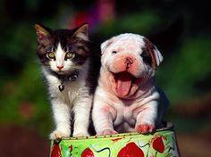 Cute friends.